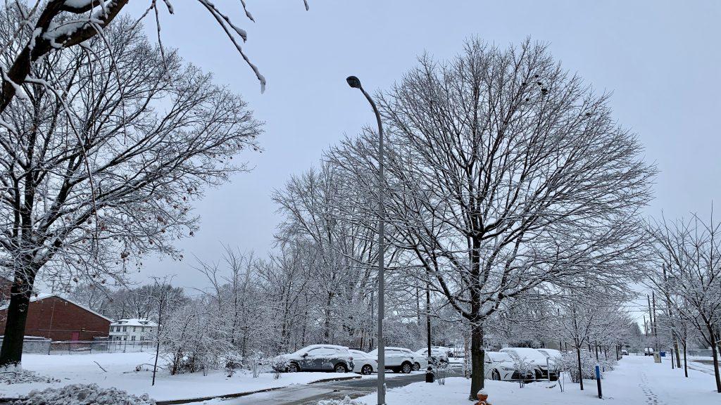 snow in Champaign