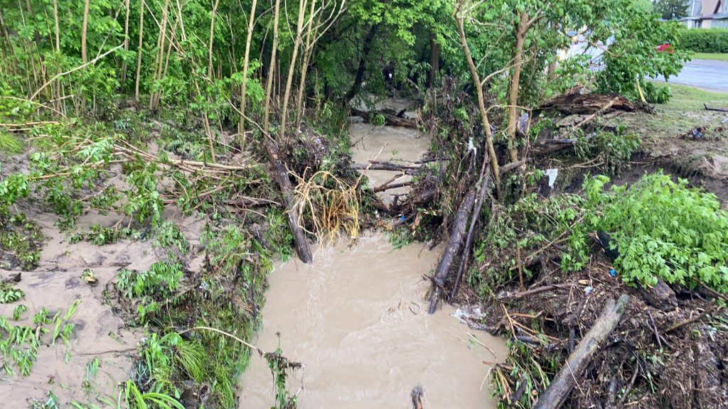 DePue flooding