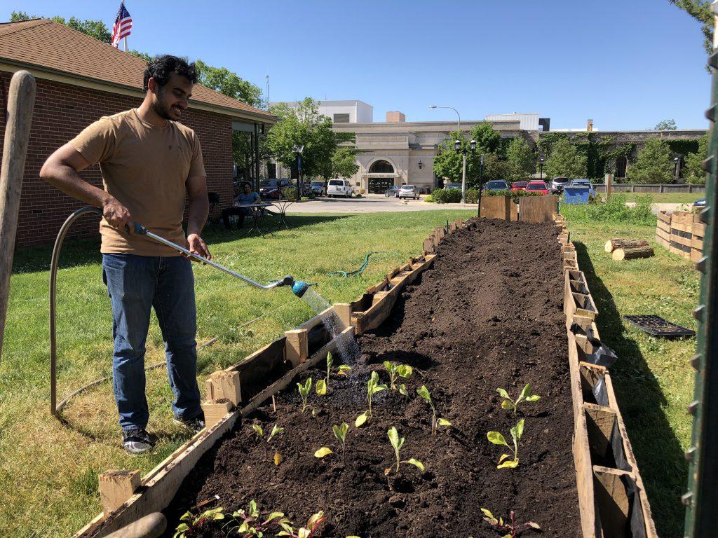 Solidarity gardens